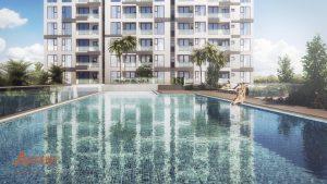 hồ bơi căn hộ ascent pl